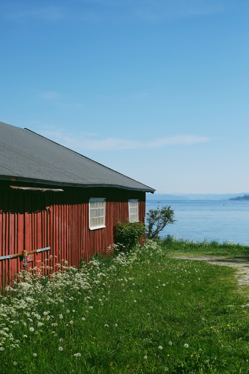 A red boathouse in the sunshine fills the left side of the frame, with green grass and cow parsley growing alongside it. Trondheim fjord is visible in the background to the right under a blue sky.