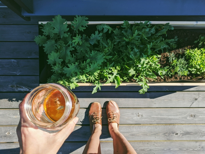 A birds-eye view of my planter box growing healthy kale and arugula. In my left hand I hold a jar of iced coffee, and my feet in brown leather shoes are visible at the bottom of the frame.